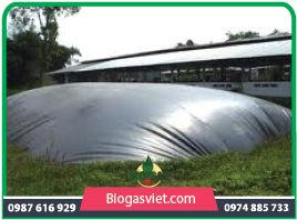 Hầm biogas phủ bạt HDPE chi phí thấp
