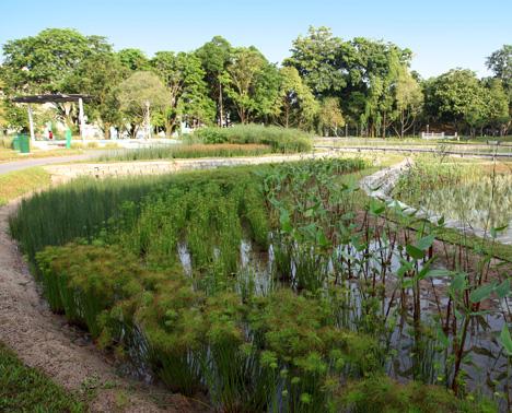 Nước thải, đặc biệt là nước thải chăn nuôi nếu như không kịp thời xử lý thì sẽ dễ gây ra ô nhiễm môi trường nặng nề. Vì thế, cần phải có một biện pháp ngay tức thời để đảm bảo sức khỏe con người cũng như cảnh quan môi trường, công nghệ xử lý […]