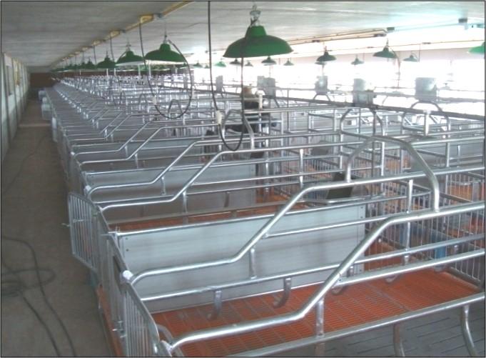 Chăn nuôi heo là một trong những thế mạnh của nước ta, đóng vai trò số 1 trong sản xuất nông nghiệp, vì thế bà con ở địa phương luôn tìm cách đẩy mạnh chất lượng, số lượng chăn nuôi để tạo nguồn thu nhập ổn đình. Để heo sinh trưởng tốt, ngoài việc nhập […]