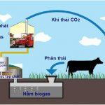 khi biogas