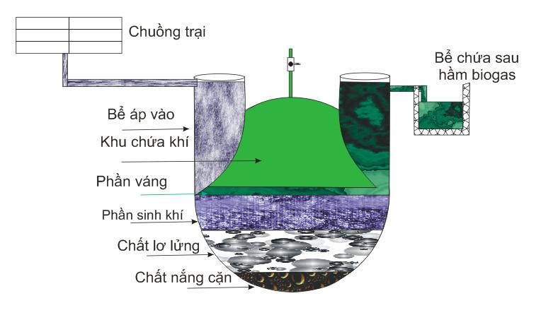 quy trình hoạt động hầm biogas composite