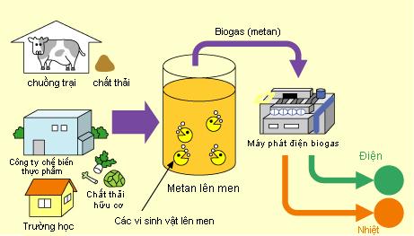 ham biogas la gi co che hoat dong ham biogas