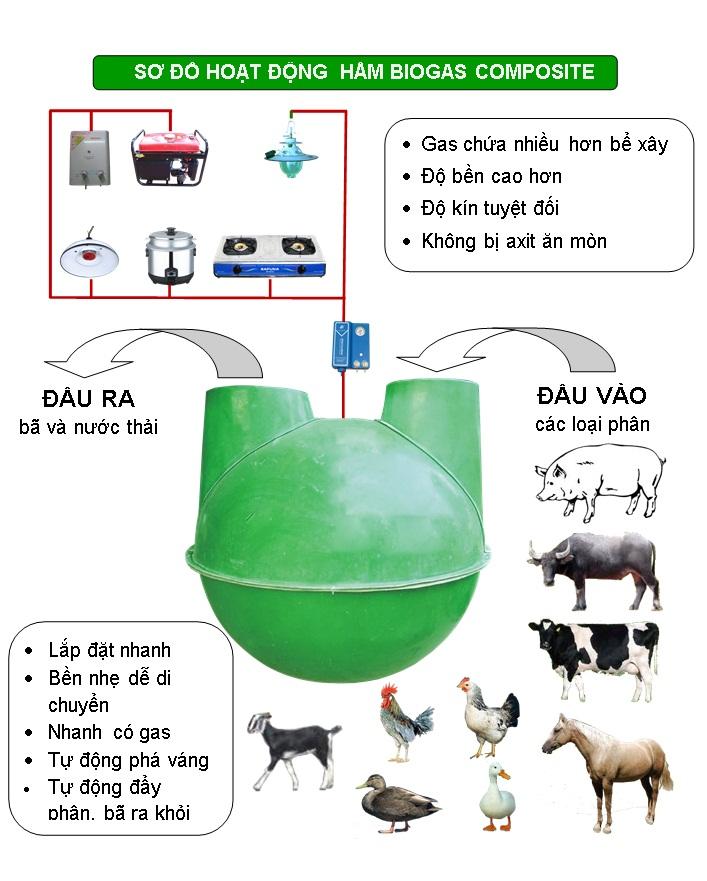 mo hinh ham biogas