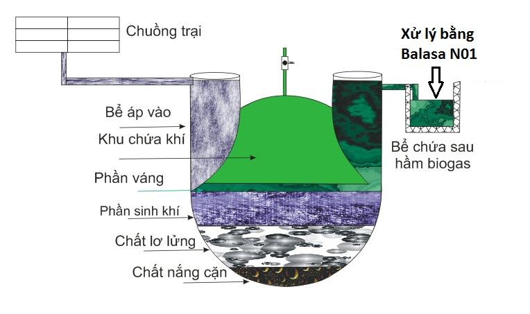 xu ly nuoc thai bang ham biogas