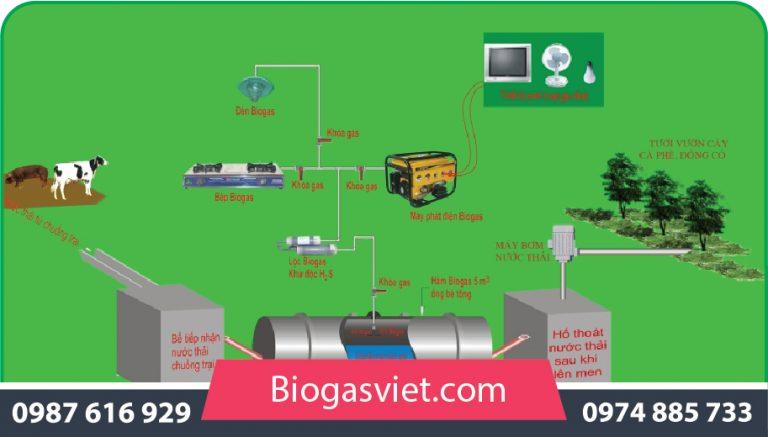 quy trình xử lý nước thải chăn nuôi