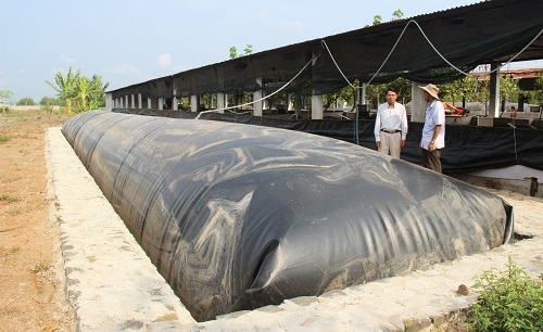 Hầm biogas cung cấp khí cho máy phát điện biogas công suất lớn