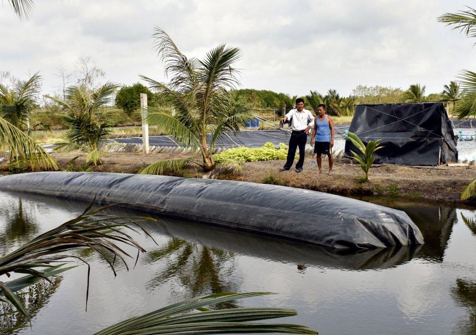 Xử lý nước thải chăn nuôi tôm bằng hầm biogas