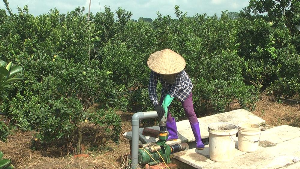 tan dung nuoc thai sau biogas (3)