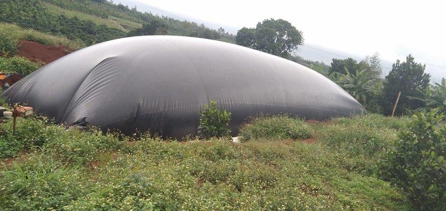 hầm biogas hdpe