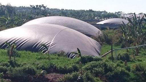 loi ich cua ham biogas hdpe (5)